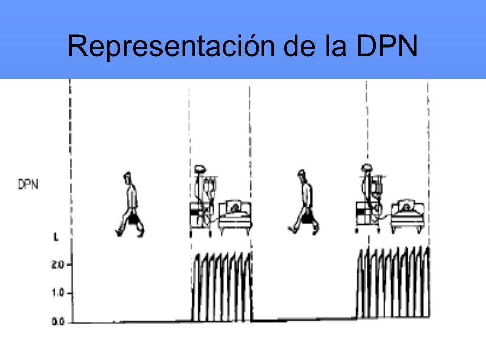 Representación de la DPN