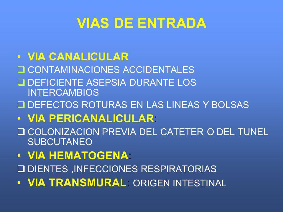 VIAS DE ENTRADA VIA CANALICULAR VIA PERICANALICULAR: VIA HEMATOGENA:
