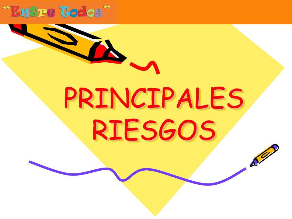 PRINCIPALES RIESGOS