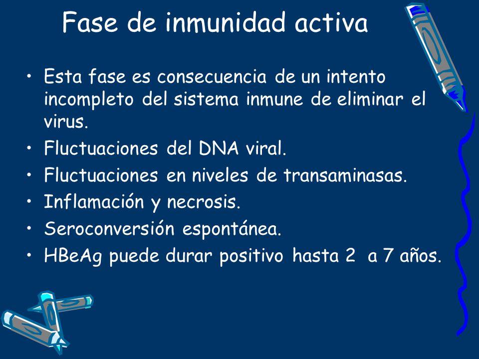Fase de inmunidad activa