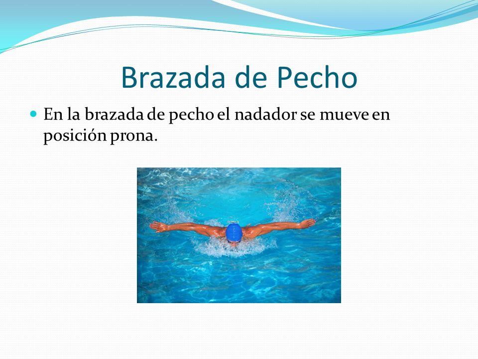 Brazada de Pecho En la brazada de pecho el nadador se mueve en posición prona.