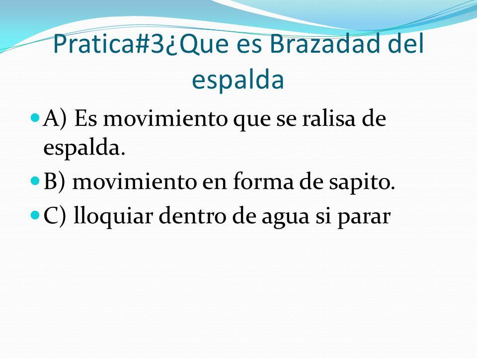 Pratica#3¿Que es Brazadad del espalda
