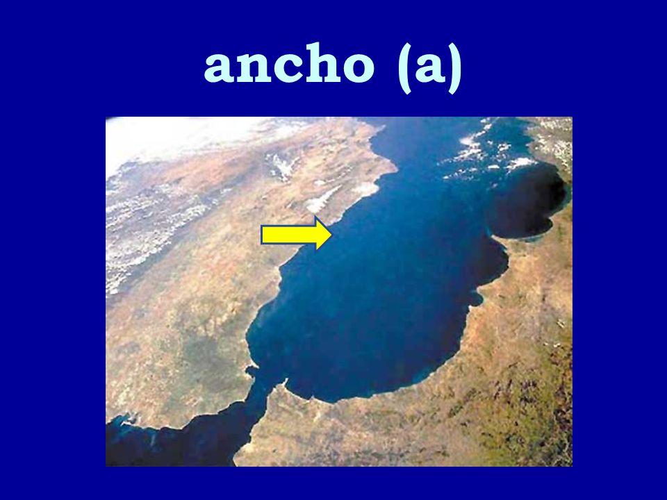 ancho (a)