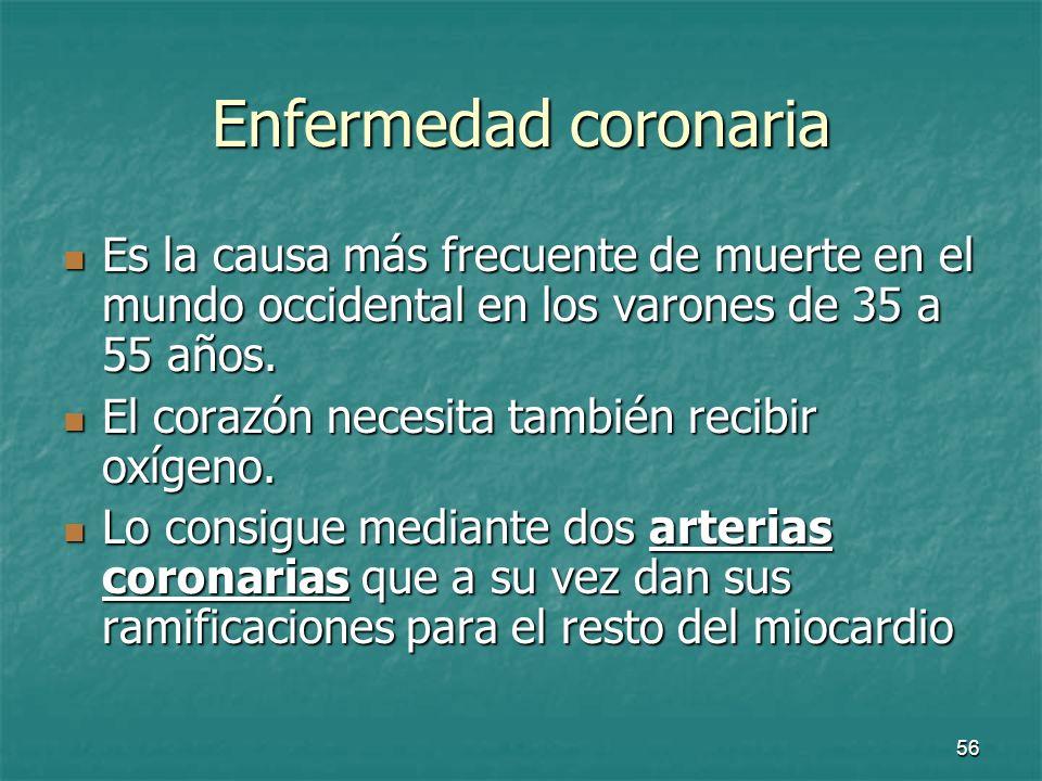 Enfermedad coronaria Es la causa más frecuente de muerte en el mundo occidental en los varones de 35 a 55 años.