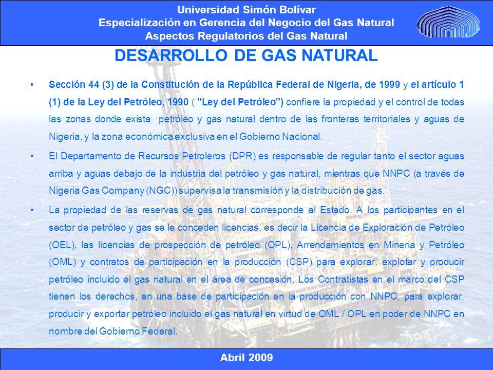DESARROLLO DE GAS NATURAL