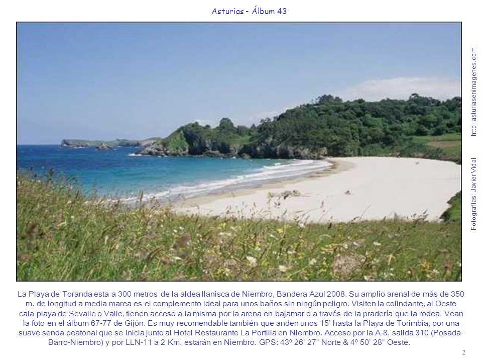 La Playa de Toranda esta a 300 metros de la aldea llanisca de Niembro, Bandera Azul 2008. Su amplio arenal de más de 350 m. de longitud a media marea es el complemento ideal para unos baños sin ningún peligro. Visiten la colindante, al Oeste cala-playa de Sevalle o Valle, tienen acceso a la misma por la arena en bajamar o a través de la pradería que la rodea. Vean la foto en el álbum 67-77 de Gijón. Es muy recomendable también que anden unos 15' hasta la Playa de Torimbia, por una suave senda peatonal que se inicia junto al Hotel Restaurante La Portilla en Niembro. Acceso por la A-8, salida 310 (Posada-Barro-Niembro) y por LLN-11 a 2 Km. estarán en Niembro. GPS: 43º 26' 27 Norte & 4º 50' 28 Oeste.