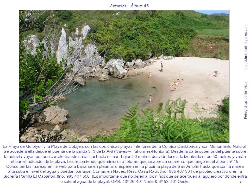 La Playa de Gulpiyuri y la Playa de Cobijero son las dos únicas playas interiores de la Cornisa Cantábrica y son Monumento Natural. Se accede a ella desde el puente de la salida 313 de la A-8 (Naves-Villahormes-Hontoria). Desde la parte superior del puente sobre la autovía vayan por una carreterina sin señalizar hacia el mar, bajan 20 metros desviándose a la izquierda otros 50 metros y verán el panel indicador de la playa. Les recomiendo que miren otra foto en que se aprecia su arena, que tengo en el álbum nº 15. Consulten las mareas en mi web para bañarse en pleamar o esperen en la próxima playa de San Antolín hasta que con la marea alta suba el nivel del agua y puedan bañarse. Coman en Naves, Rest. Casa Raúl, tfno. 985 407 304 de picoteo creativo o en la Sidrería Parrilla El Cabañón, tfno. 985 407 550. (Es importante que no dejen a los niños que se acerquen al agujero por donde entra o sale el agua de la playa). GPS: 43º 26' 40 Norte & 4º 53' 10 Oeste.