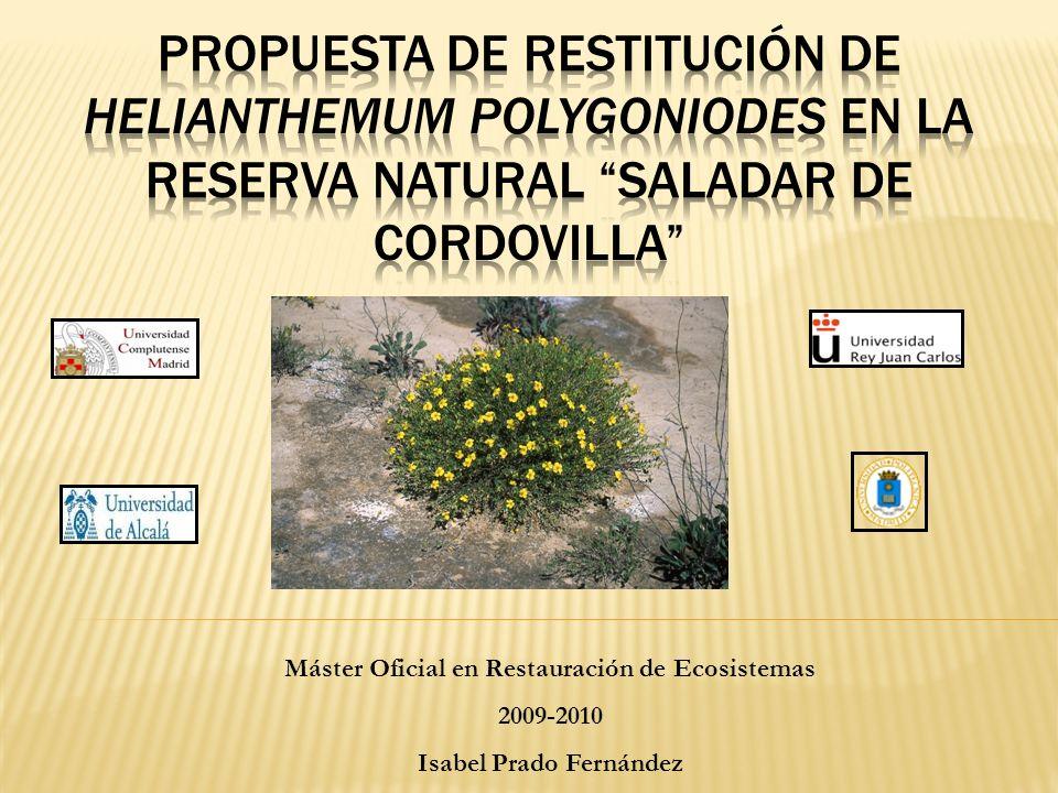 Máster Oficial en Restauración de Ecosistemas Isabel Prado Fernández