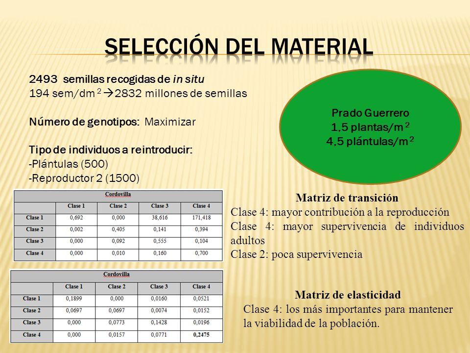 Selección del material