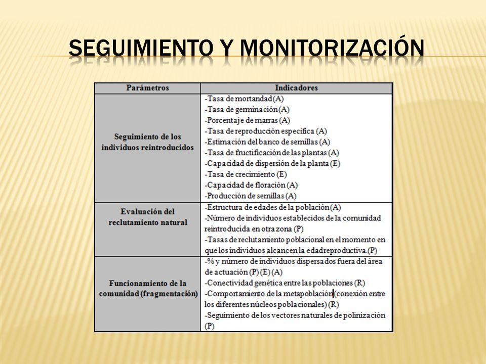 seguimiento y monitorización