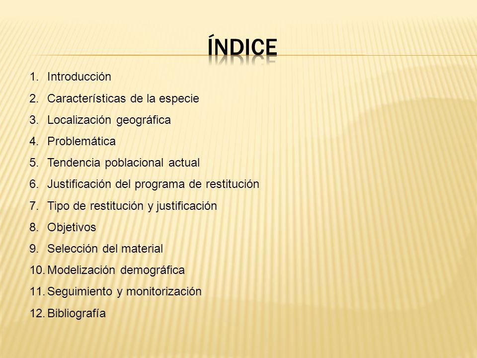 ÍNDICE Introducción Características de la especie