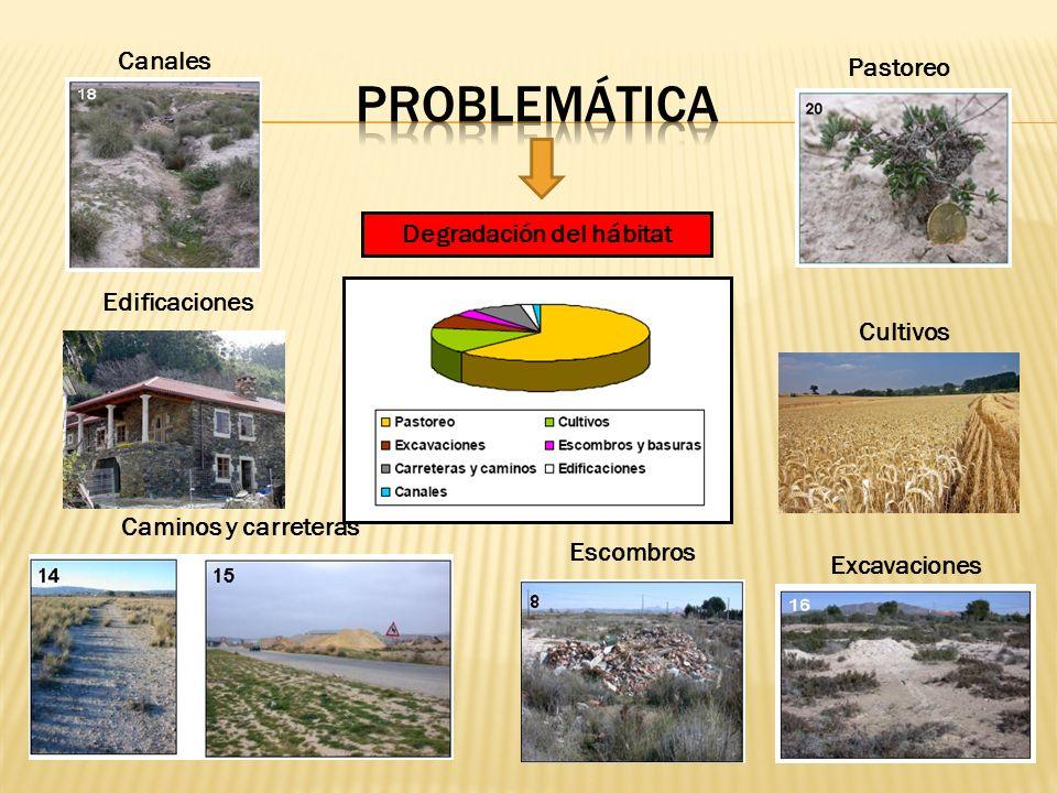 Degradación del hábitat