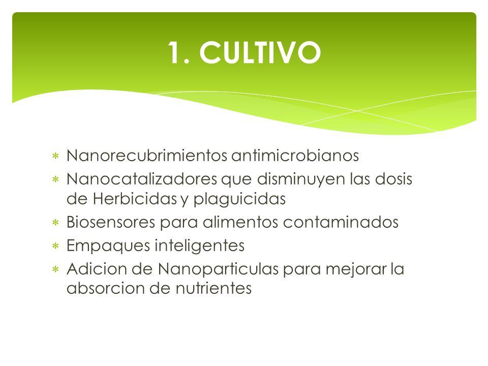 1. CULTIVO Nanorecubrimientos antimicrobianos
