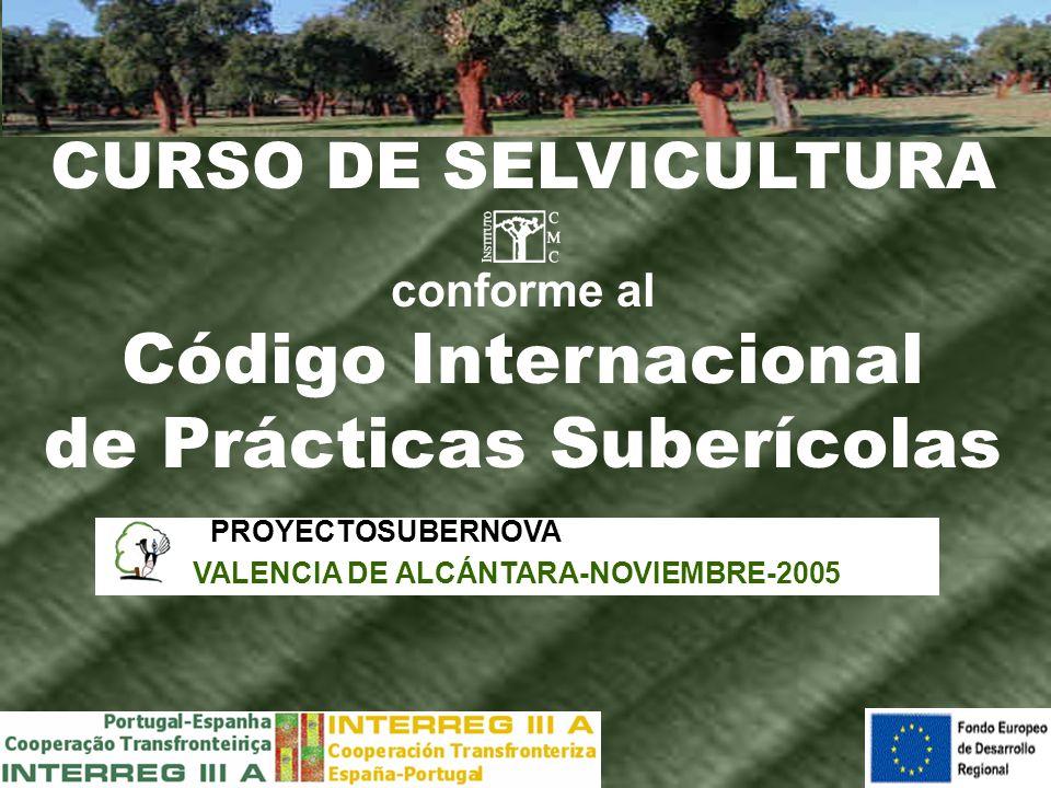 de Prácticas Suberícolas VALENCIA DE ALCÁNTARA-NOVIEMBRE-2005