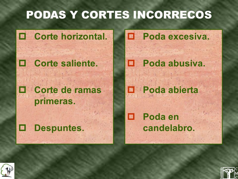 PODAS Y CORTES INCORRECOS