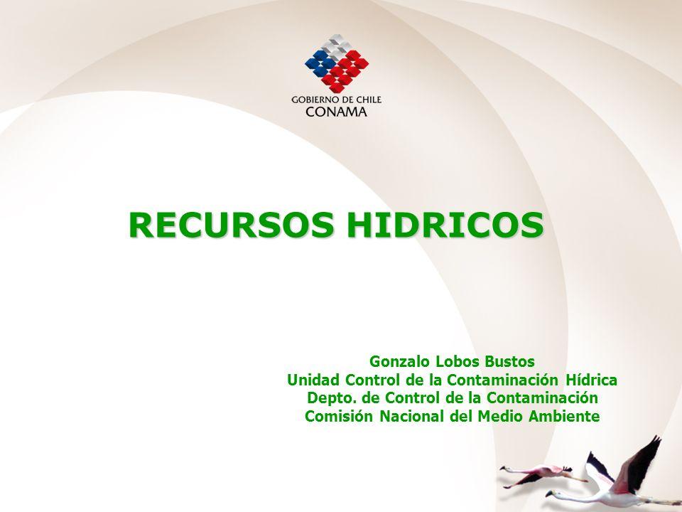RECURSOS HIDRICOS Gonzalo Lobos Bustos