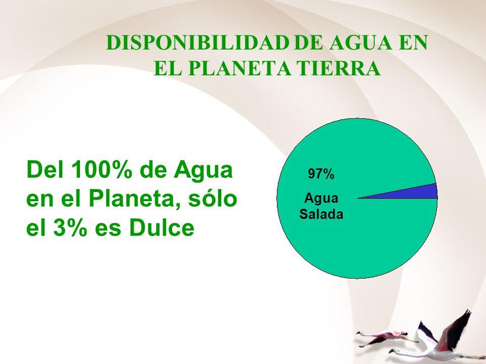 DISPONIBILIDAD DE AGUA EN EL PLANETA TIERRA