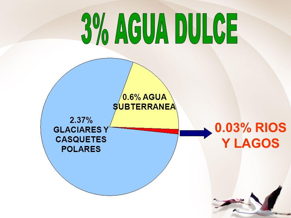 2.37% GLACIARES Y CASQUETES POLARES