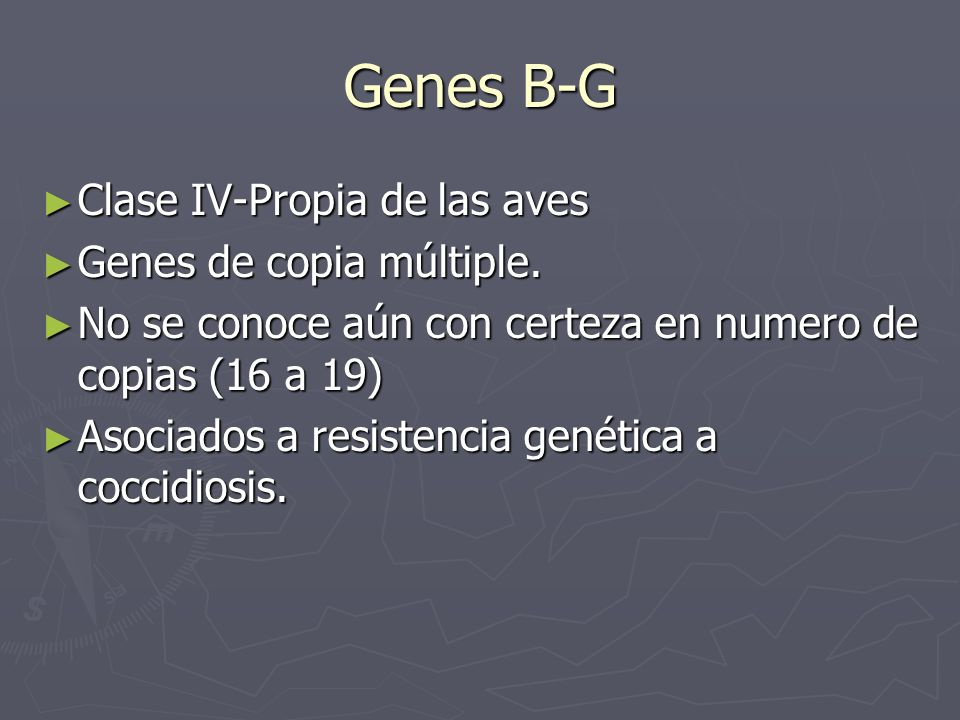 Genes B-G Clase IV-Propia de las aves Genes de copia múltiple.