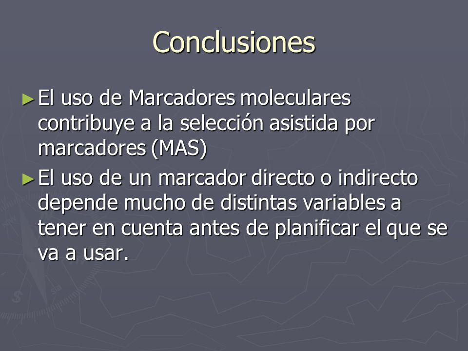Conclusiones El uso de Marcadores moleculares contribuye a la selección asistida por marcadores (MAS)