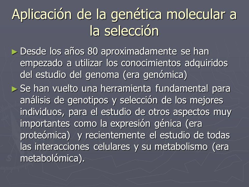 Aplicación de la genética molecular a la selección