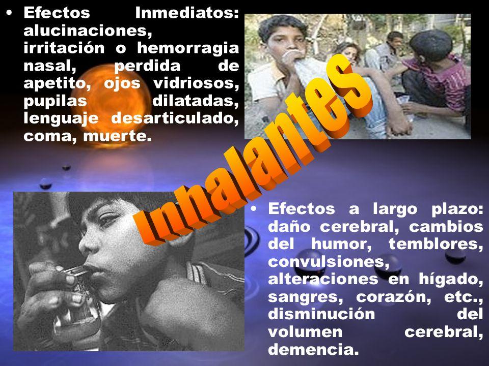 Efectos Inmediatos: alucinaciones, irritación o hemorragia nasal, perdida de apetito, ojos vidriosos, pupilas dilatadas, lenguaje desarticulado, coma, muerte.