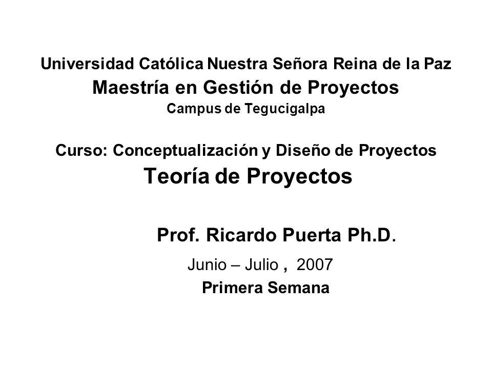 Prof. Ricardo Puerta Ph.D. Junio – Julio , 2007