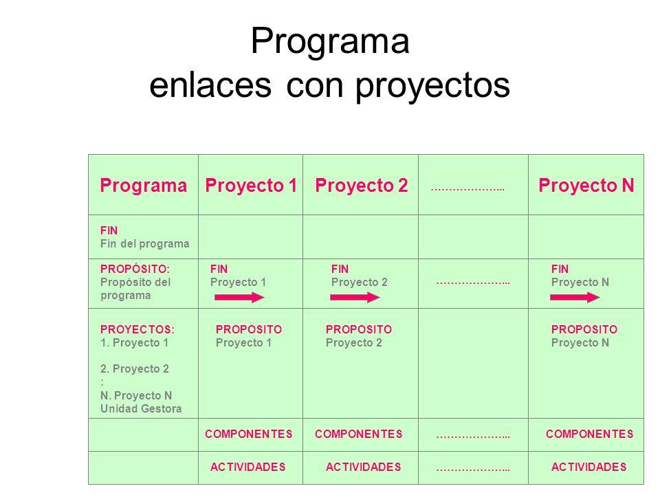 Programa enlaces con proyectos