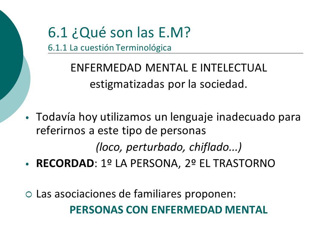 6.1 ¿Qué son las E.M 6.1.1 La cuestión Terminológica