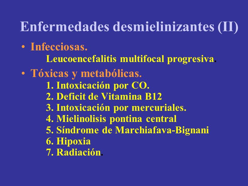 Enfermedades desmielinizantes (II)