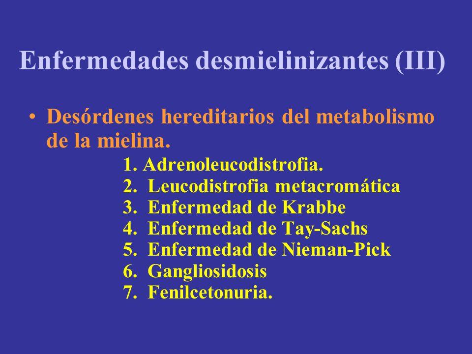 Enfermedades desmielinizantes (III)