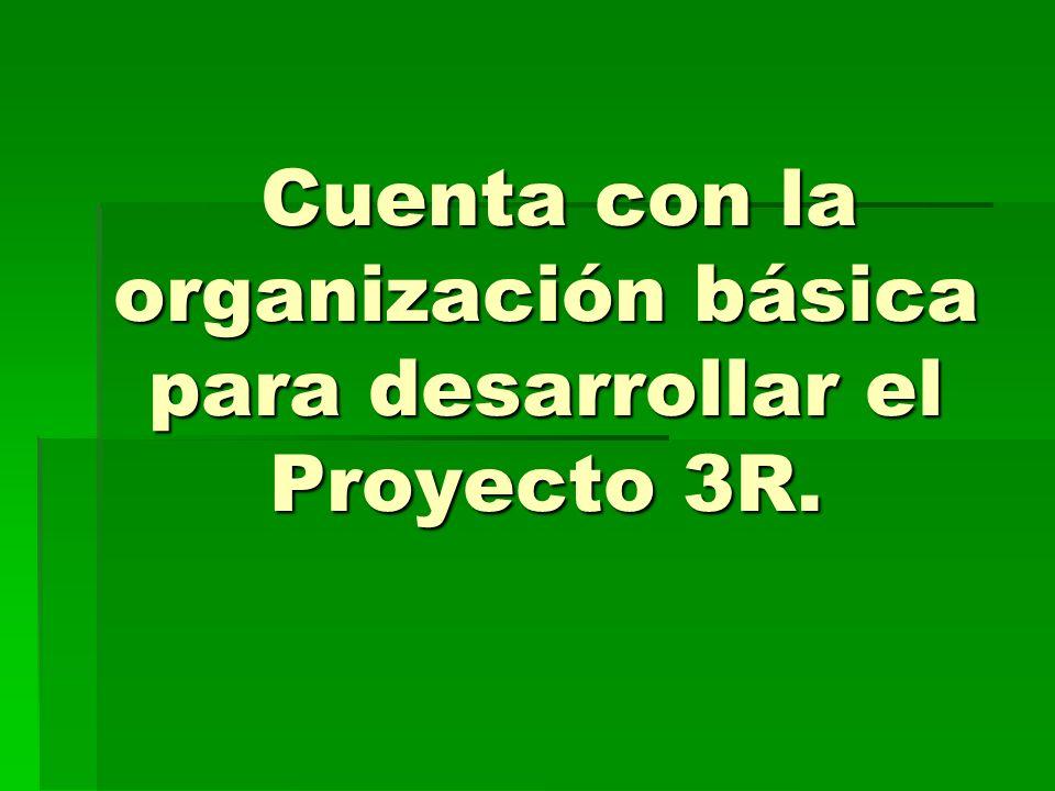 Cuenta con la organización básica para desarrollar el Proyecto 3R.