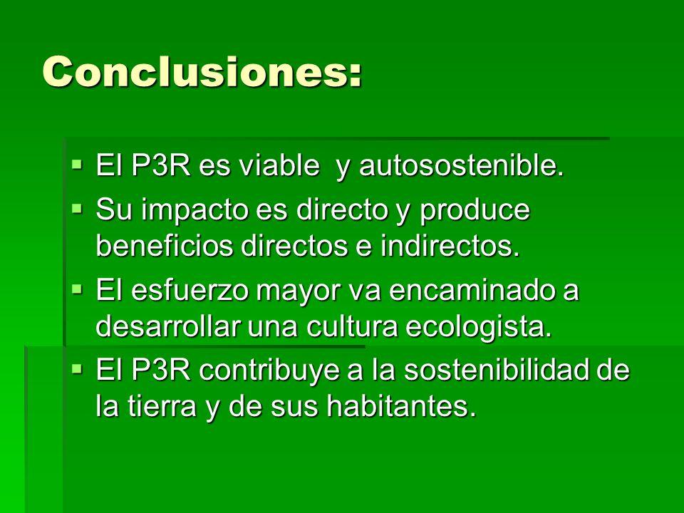 Conclusiones: El P3R es viable y autosostenible.