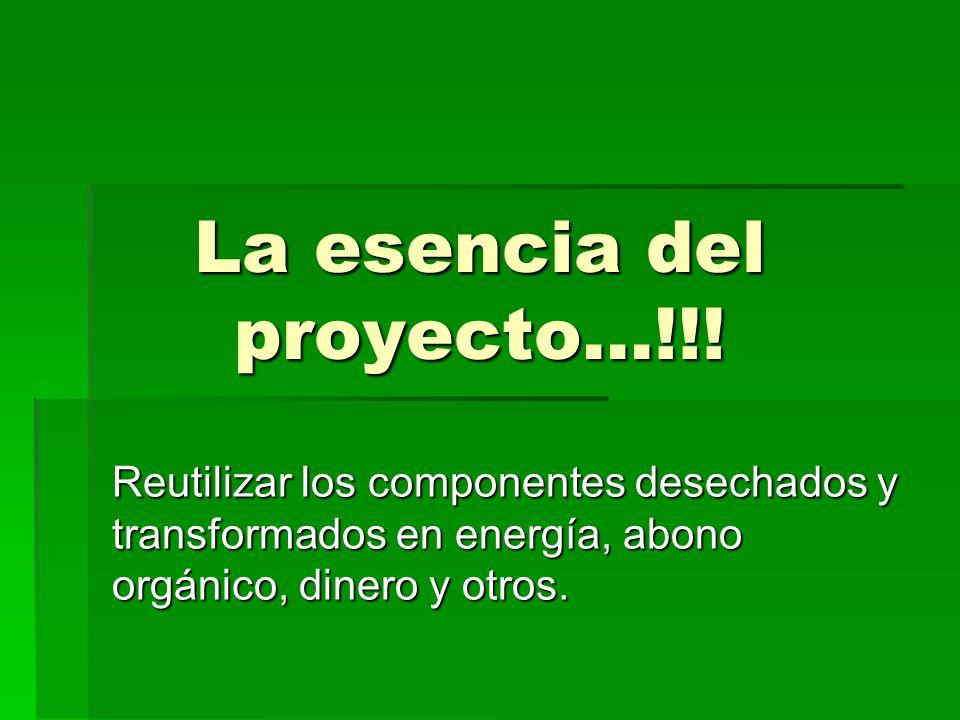 La esencia del proyecto…!!!
