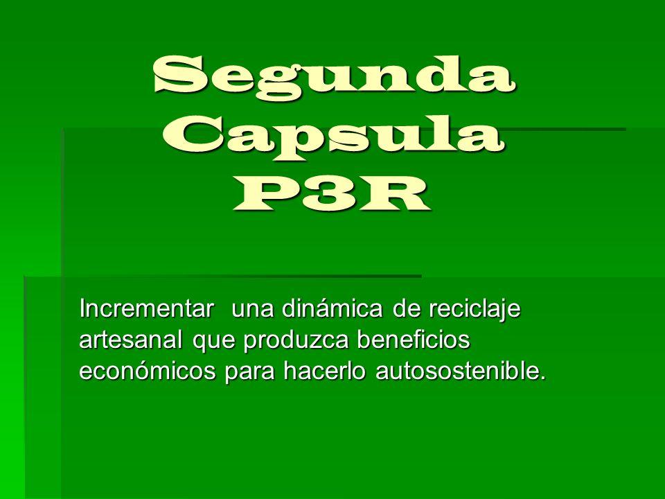 Segunda Capsula P3RIncrementar una dinámica de reciclaje artesanal que produzca beneficios económicos para hacerlo autosostenible.