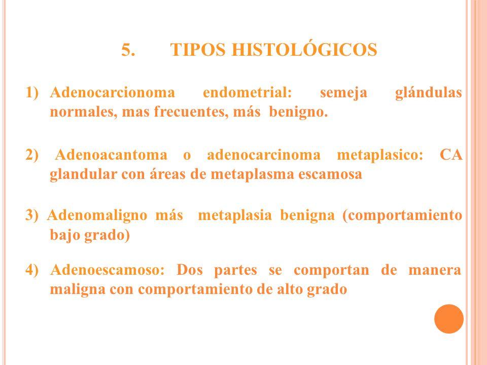 5. TIPOS HISTOLÓGICOS. Adenocarcionoma endometrial: semeja glándulas normales, mas frecuentes, más benigno.