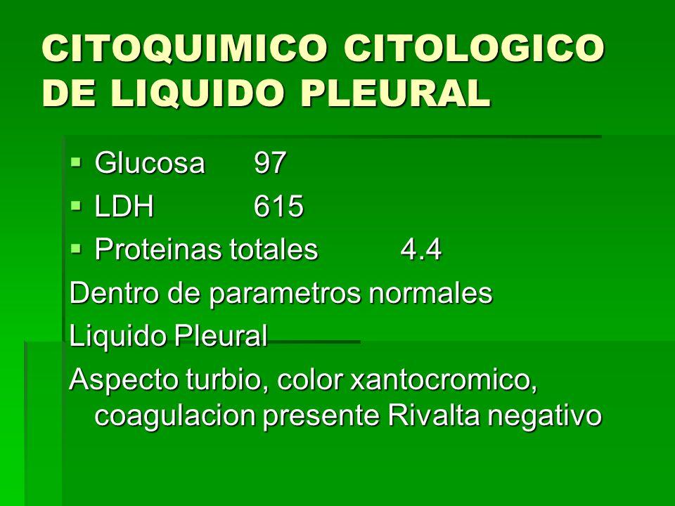 CITOQUIMICO CITOLOGICO DE LIQUIDO PLEURAL