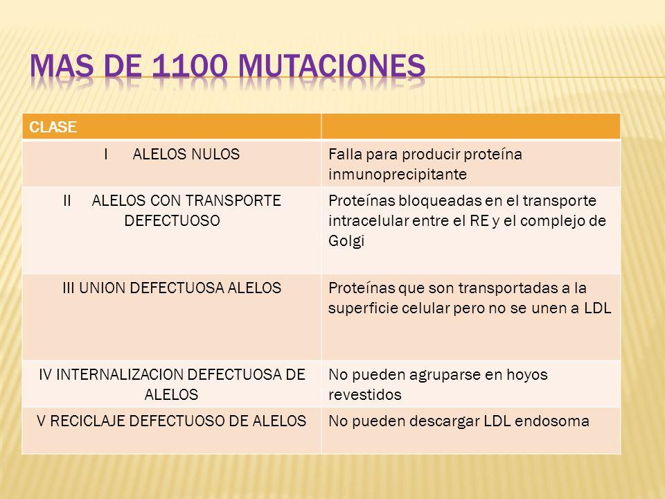 Mas de 1100 mutaciones CLASE I ALELOS NULOS