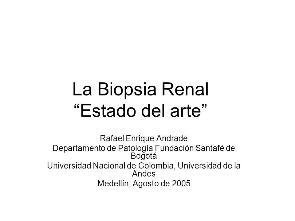 La Biopsia Renal Estado del arte