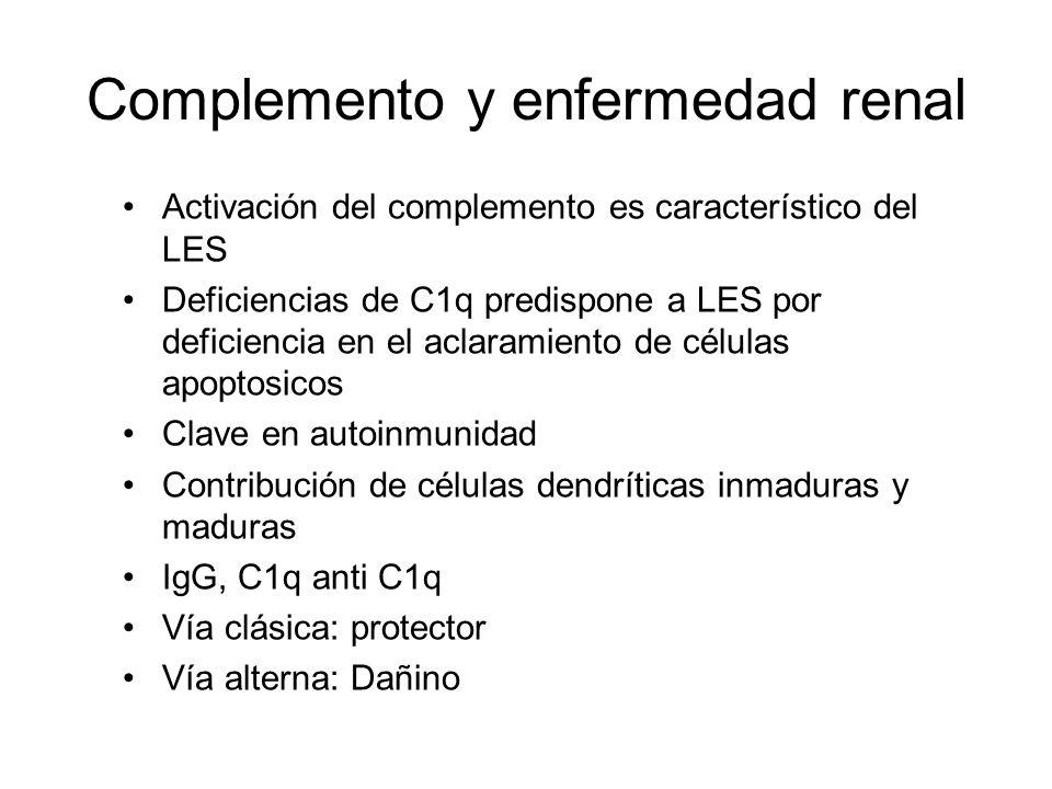 Complemento y enfermedad renal