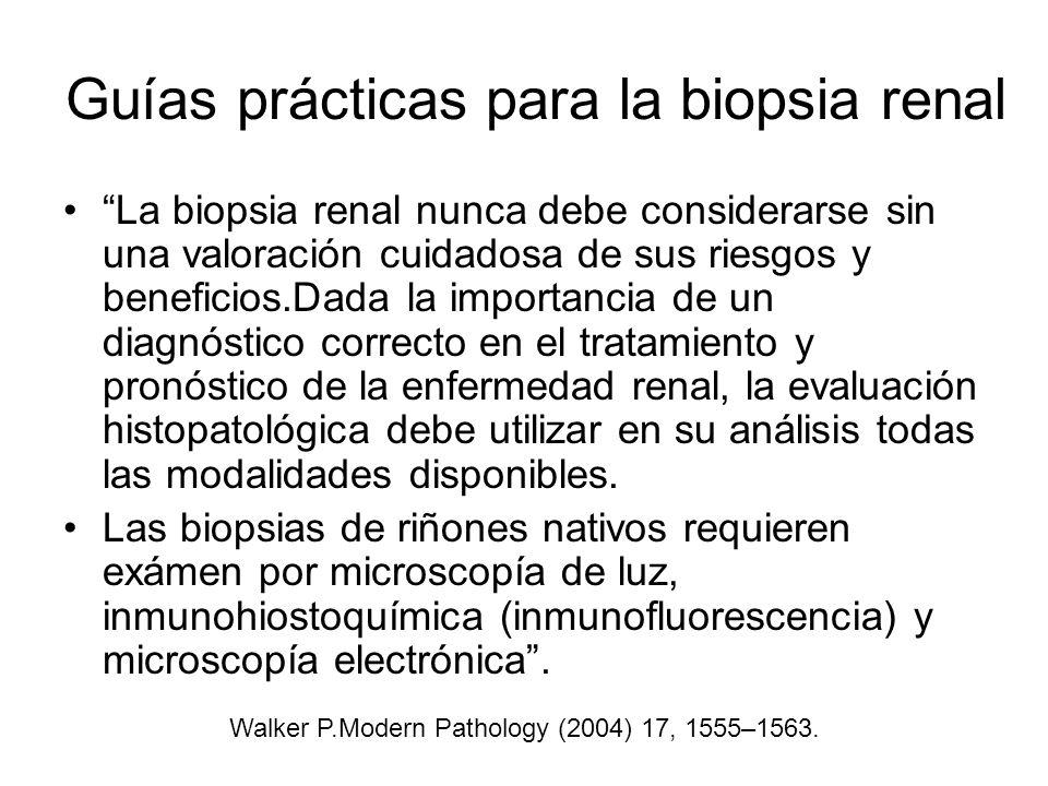 Guías prácticas para la biopsia renal