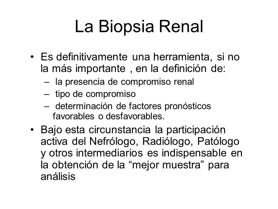 La Biopsia RenalEs definitivamente una herramienta, si no la más importante , en la definición de: la presencia de compromiso renal.