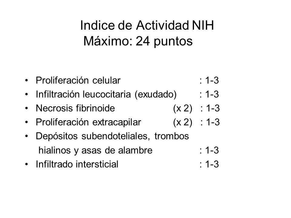 Indice de Actividad NIH Máximo: 24 puntos