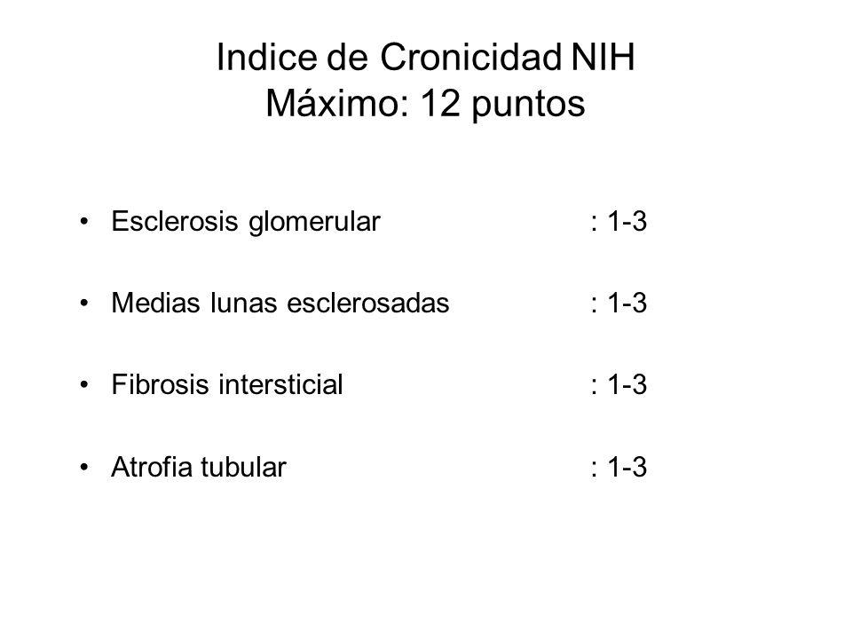 Indice de Cronicidad NIH Máximo: 12 puntos