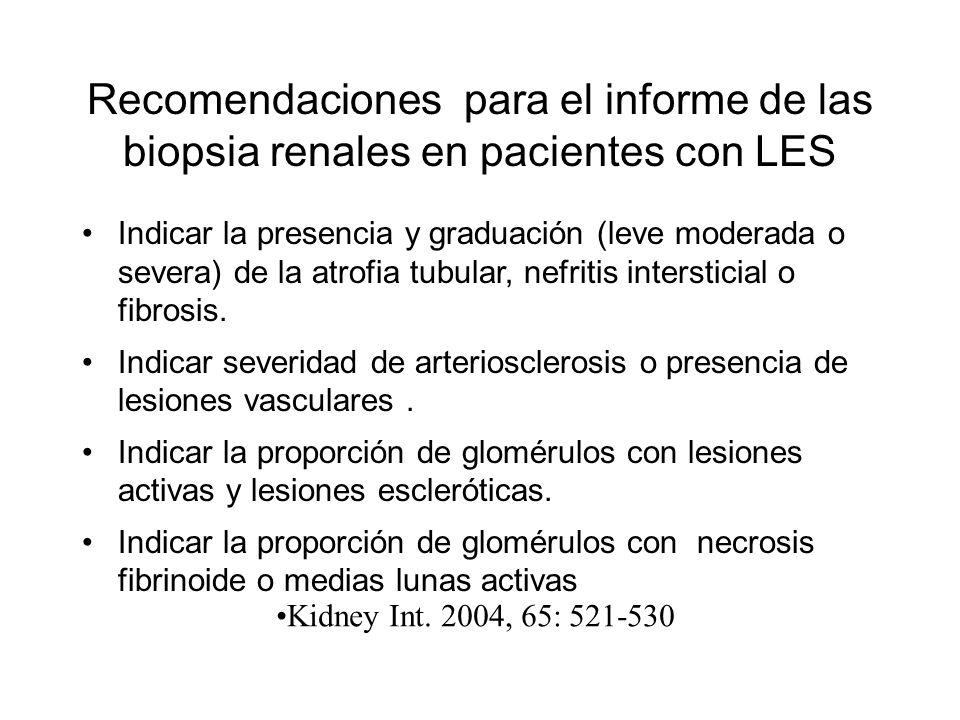 Recomendaciones para el informe de las biopsia renales en pacientes con LES