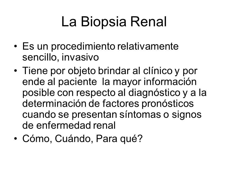 La Biopsia Renal Es un procedimiento relativamente sencillo, invasivo