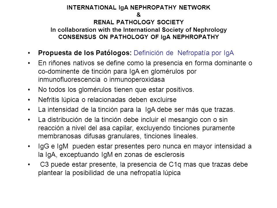 Propuesta de los Patólogos: Definición de Nefropatía por IgA