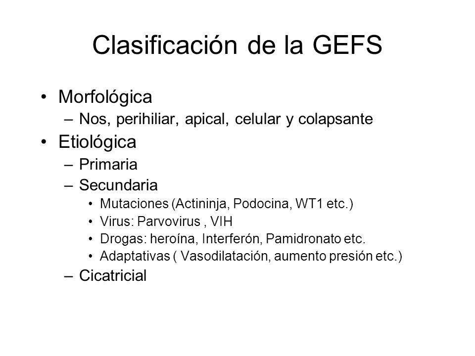Clasificación de la GEFS