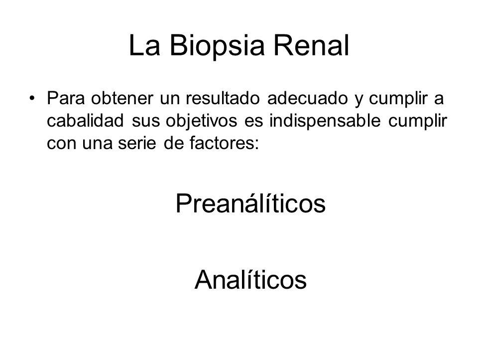La Biopsia Renal Preanálíticos Analíticos
