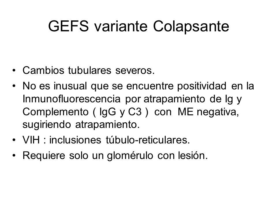 GEFS variante Colapsante